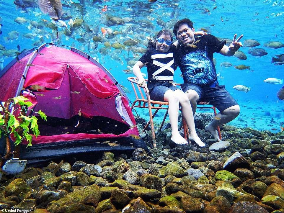 Ảnh chụp dưới nước độc đáo khiến khách nườm nượp kéo đến lặn ao làng ở Indonesia - 4