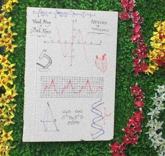 """Độc đáo """"ảnh cưới"""" bằng đồ thị, ADN của thầy dạy Sinh và cô dạy Toán - 1"""