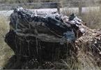 Tảng đá 'phù thủy' nặng 1 tấn trong vườn quốc gia biến mất bí ẩn