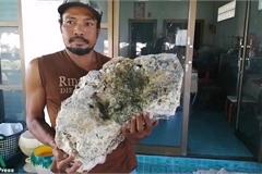 Nhặt rác trên bãi biển, tình cờ tìm thấy vật quý giá 16,7 tỉ đồng