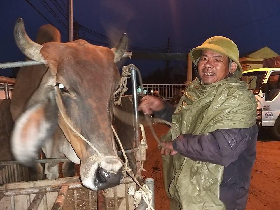 Nhộn nhịp phiên chợ trâu, bò lớn nhất miền Bắc - 6