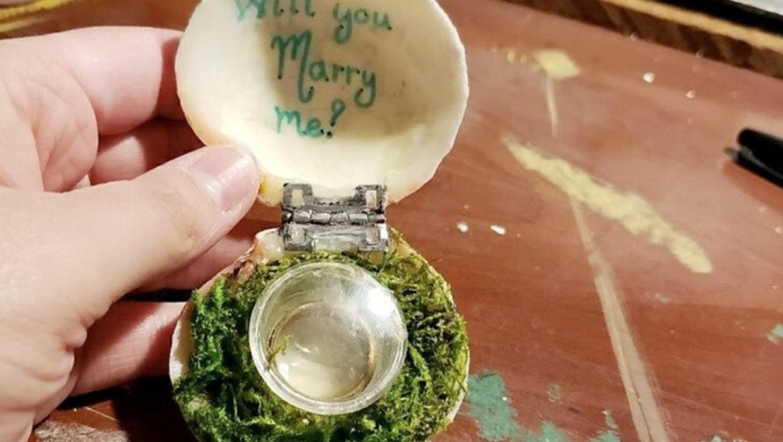 Màn cầu hôn dưới đáy biển Caribbean với chiếc nhẫn giấu trong vỏ sò - 2