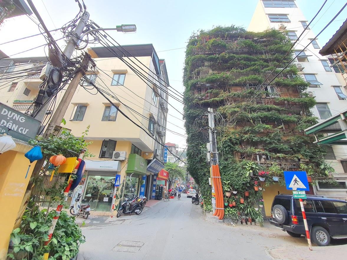 Nhà cây 5 tầng phủ kín hoa giấy ở Hà Nội, ai đi qua cũng dừng lại ngắm - 2