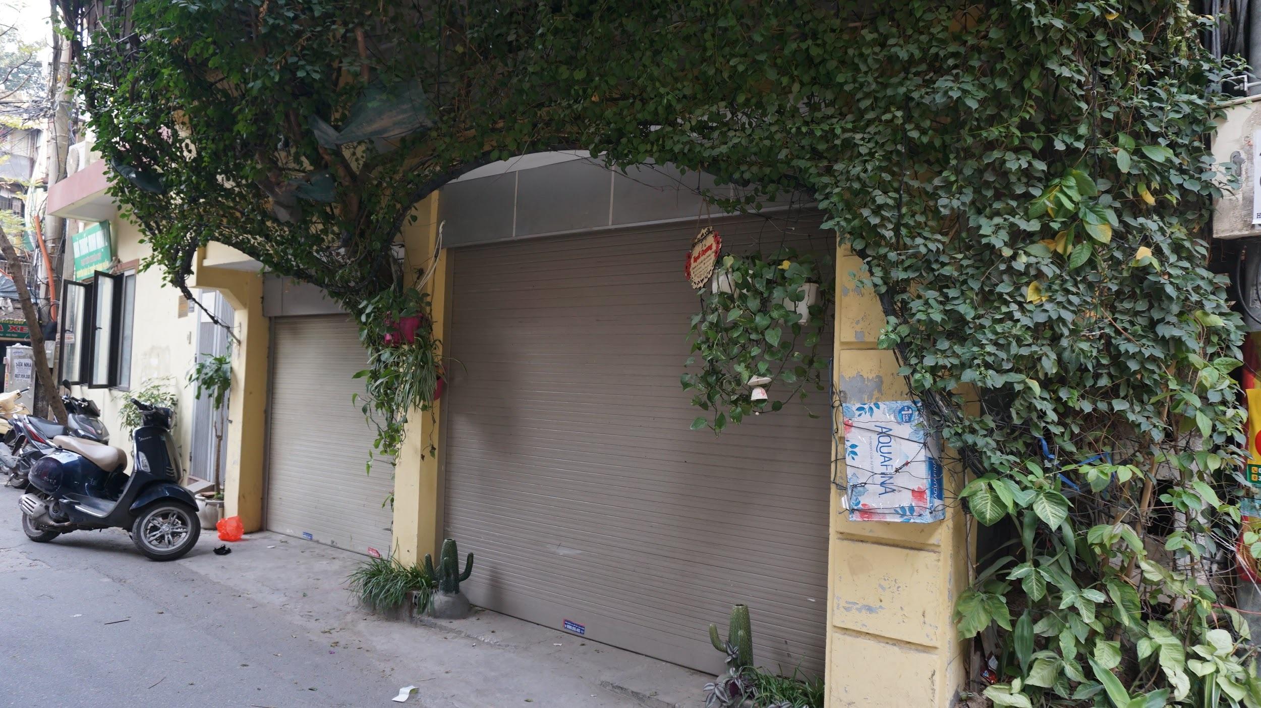 Nhà cây 5 tầng phủ kín hoa giấy ở Hà Nội, ai đi qua cũng dừng lại ngắm - 5