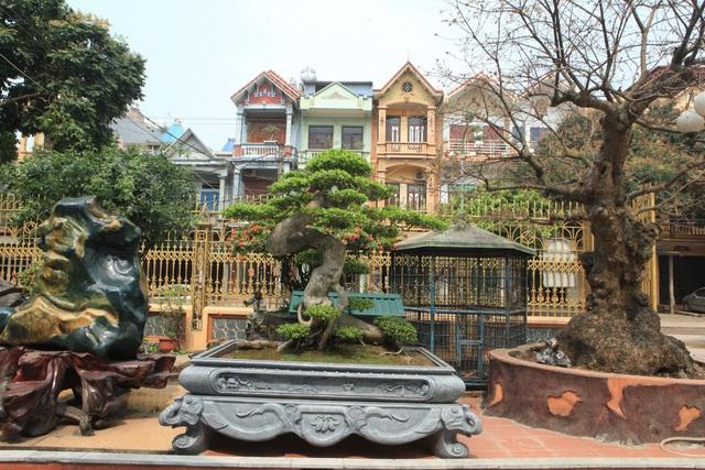 Lạc bước vào những khu vườn đắt giá như vàng ròng của các đại gia Việt - 9