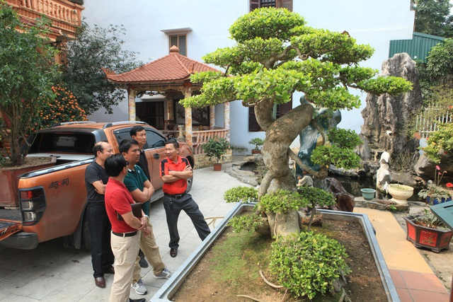 Lạc bước vào những khu vườn đắt giá như vàng ròng của các đại gia Việt - 10