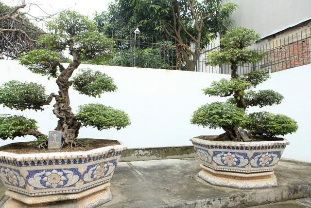 Lạc bước vào những khu vườn đắt giá như vàng ròng của các đại gia Việt - 11