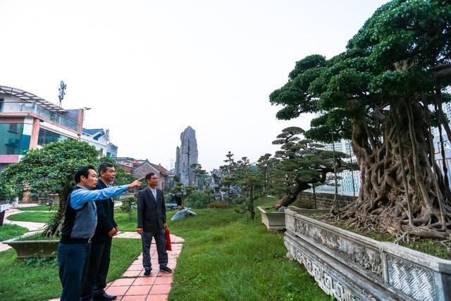 Lạc bước vào những khu vườn đắt giá như vàng ròng của các đại gia Việt - 4
