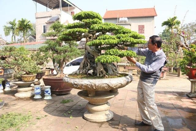 Lạc bước vào những khu vườn đắt giá như vàng ròng của các đại gia Việt - 8