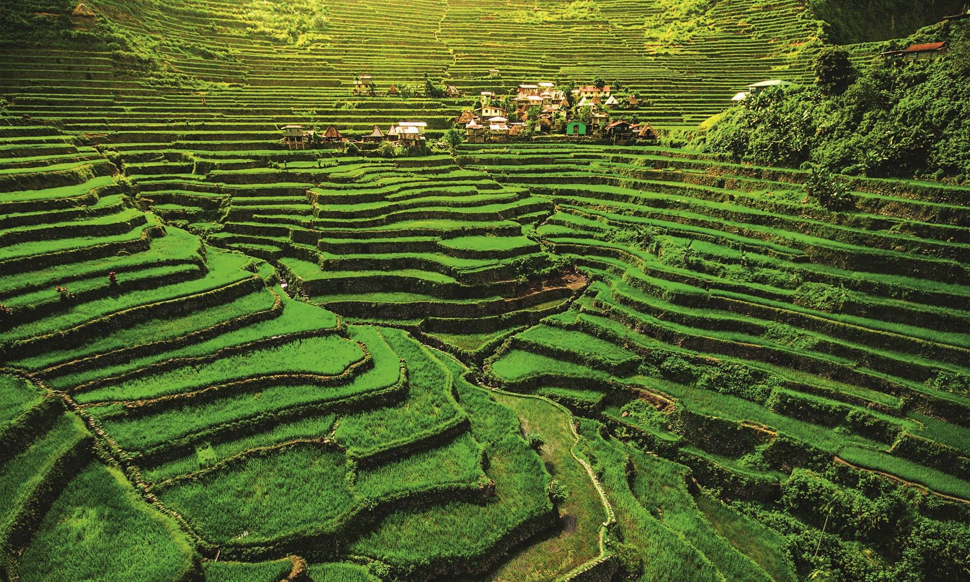Những trải nghiệm thú vị nhất nên thử ở Đông Nam Á (P1) - 6