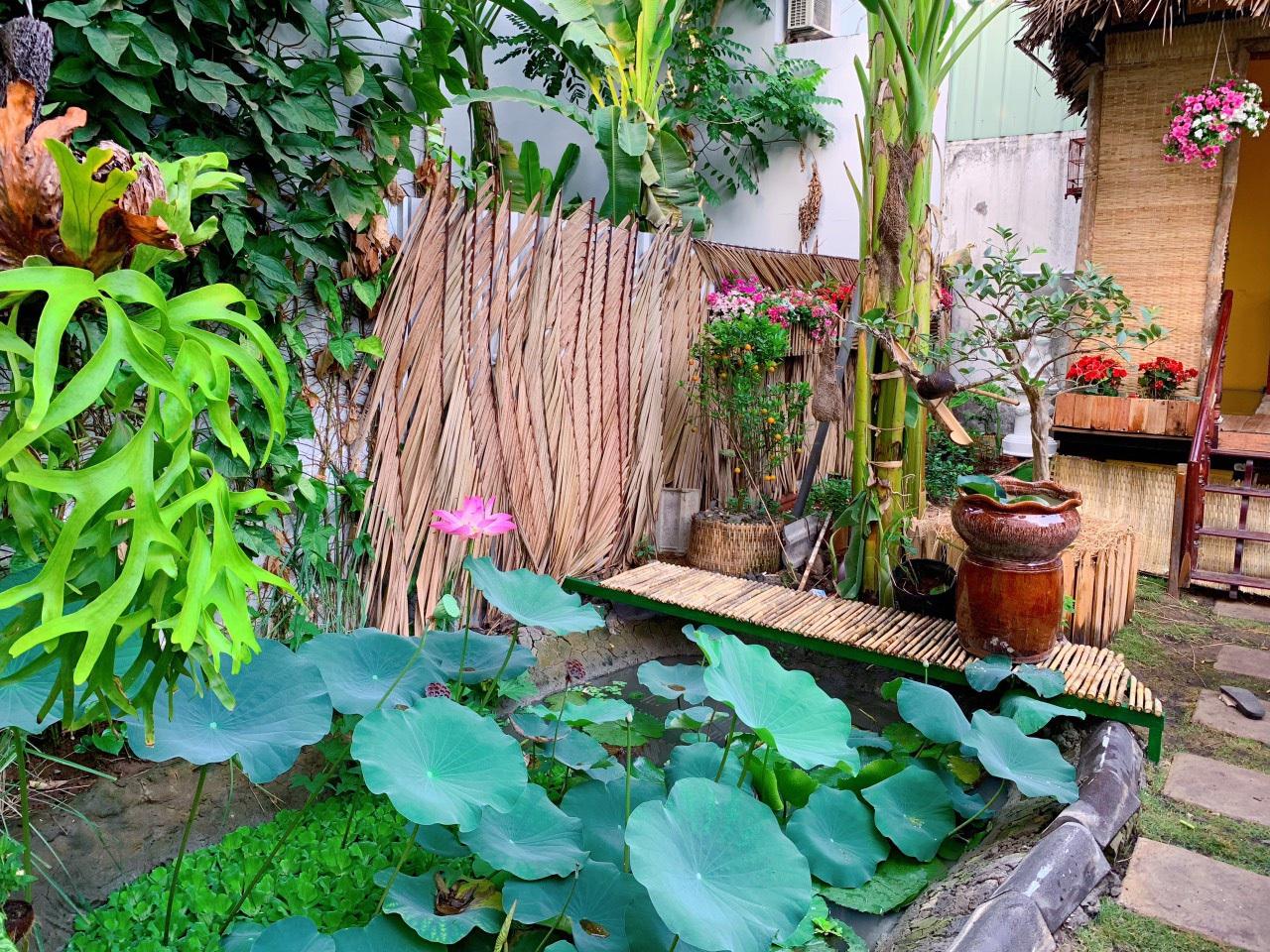 Bỏ 50 triệu đồng cải tạo vườn chuối thành khu sinh thái trong mơ - 5