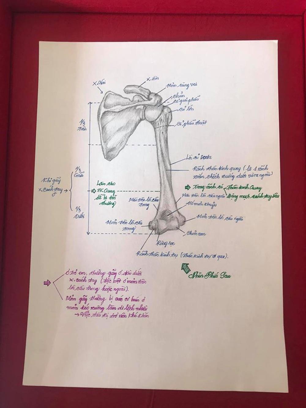 Nam sinh có biệt tài vẽ giải phẫu cơ thể người chi tiết khó tin - 4