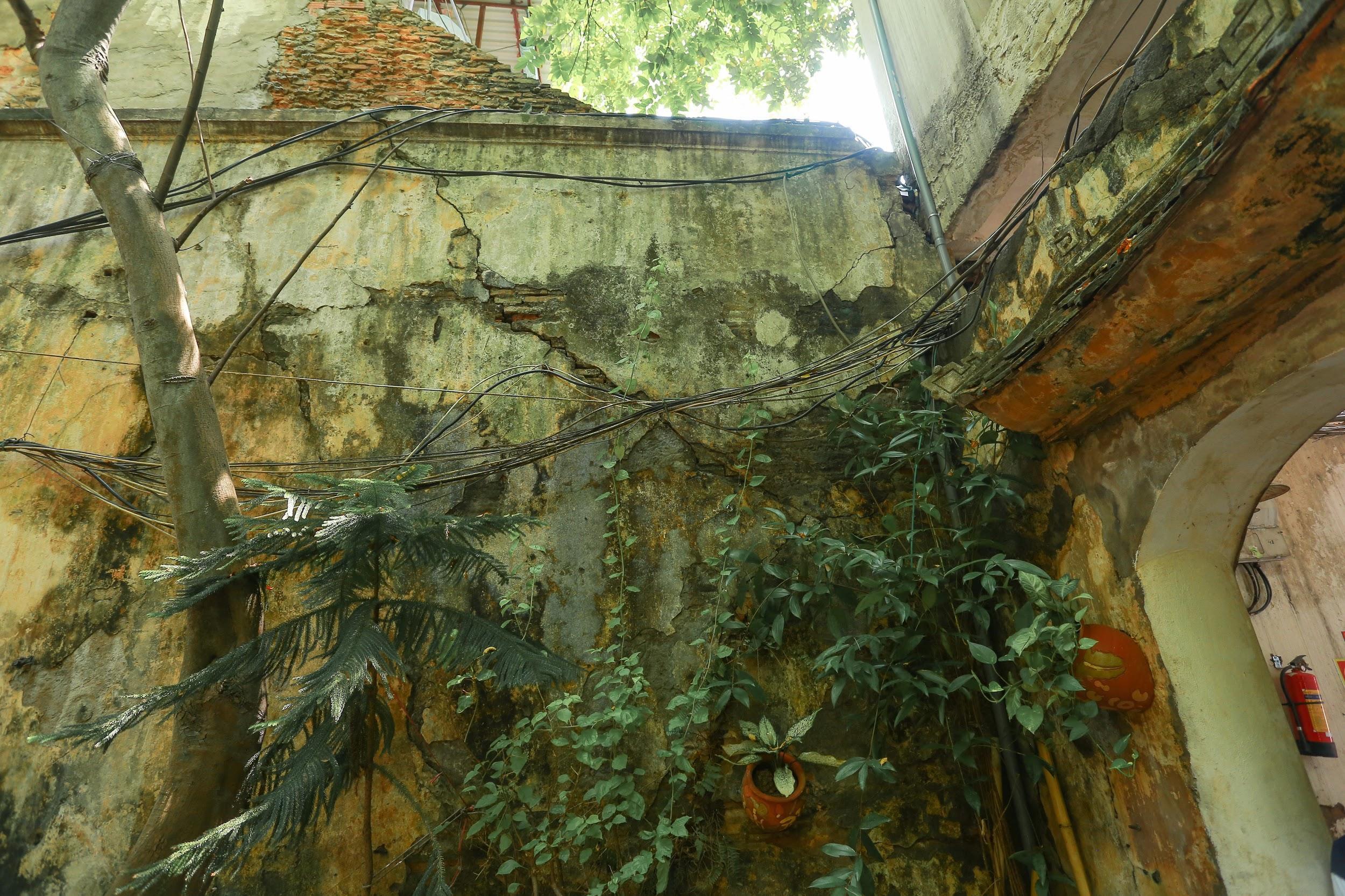 Biệt thự vườn rộng 700m2 của đại gia kim hoàn phố cổ Hà Nội một thời - 4