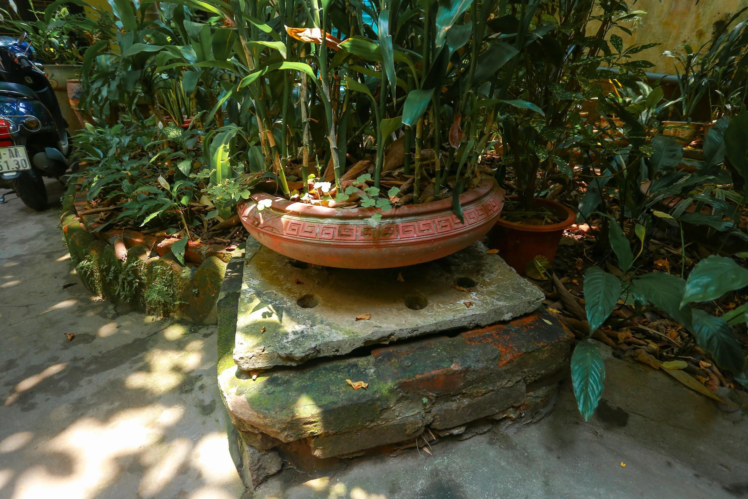 Biệt thự vườn rộng 700m2 của đại gia kim hoàn phố cổ Hà Nội một thời - 6