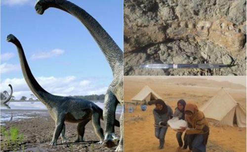 Khám phá lục địa đen, trải nghiệm Chén Thánh châu Phi - 1