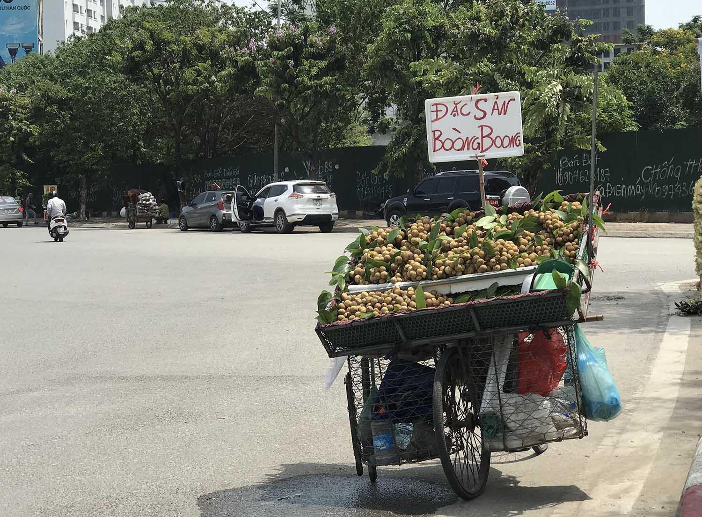 Hoa quả siêu rẻ tràn vỉa hè: Người tiêu dùng cẩn thận tránh sập bẫy - 10