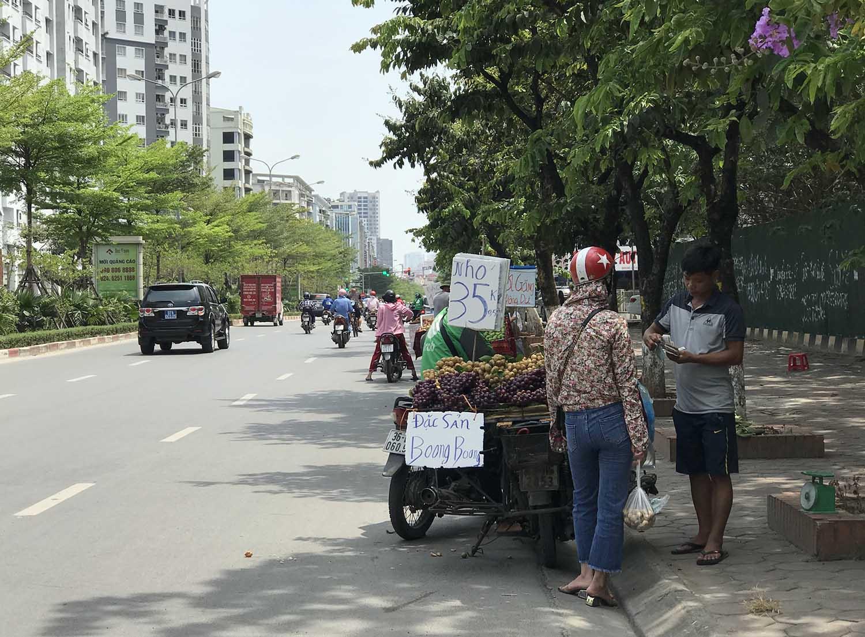 Hoa quả siêu rẻ tràn vỉa hè: Người tiêu dùng cẩn thận tránh sập bẫy - 6