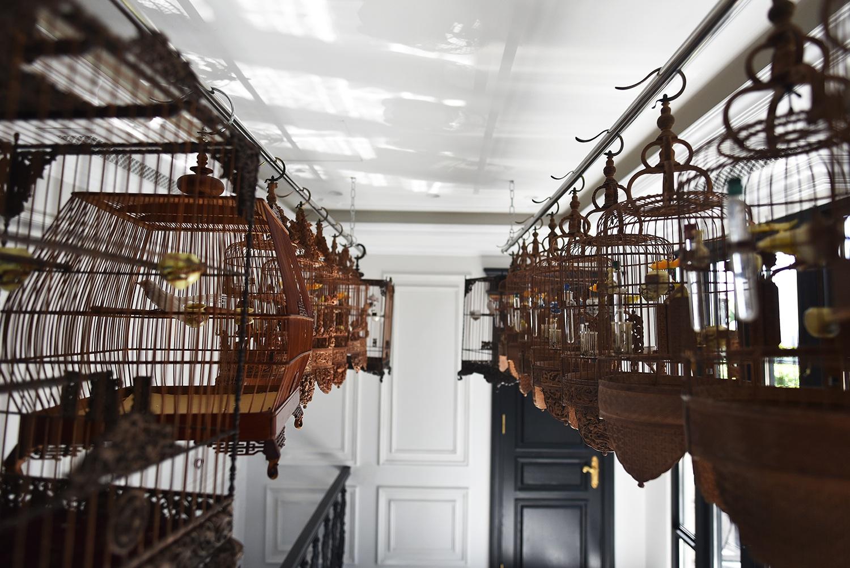 Cận cảnh bộ sưu tập lồng chim đắt đỏ giá 10 tỷ đồng của đại gia Việt - 1