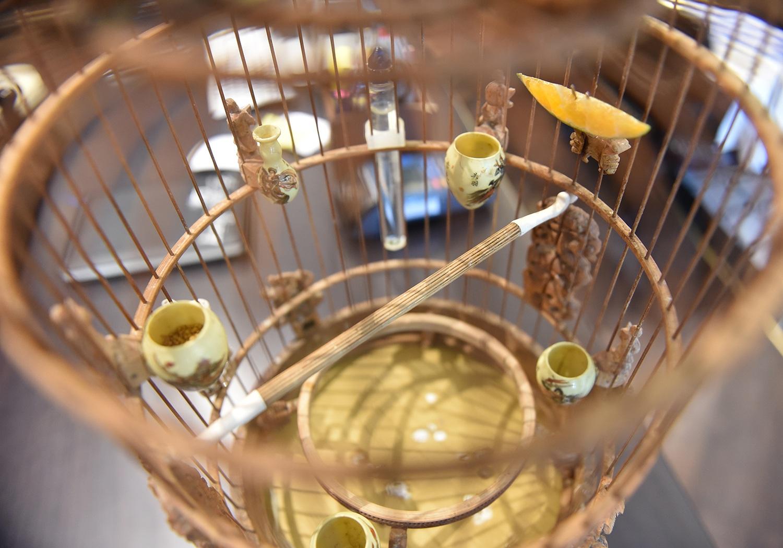 Cận cảnh bộ sưu tập lồng chim đắt đỏ giá 10 tỷ đồng của đại gia Việt - 11