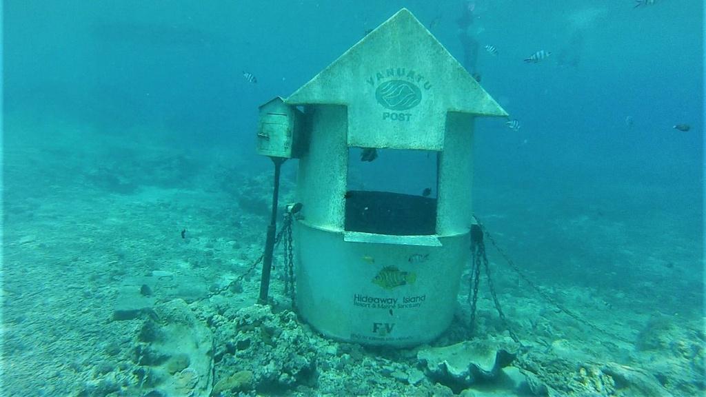 Mặc bikini đi gửi thư ở bưu điện... dưới đáy biển - 4