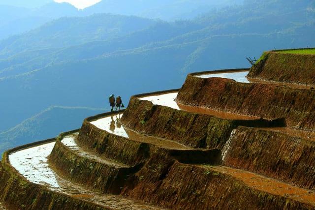 Ngắm ruộng bậc thang Mù Cang Chải đẹp lung linh mùa đổ nước - 1