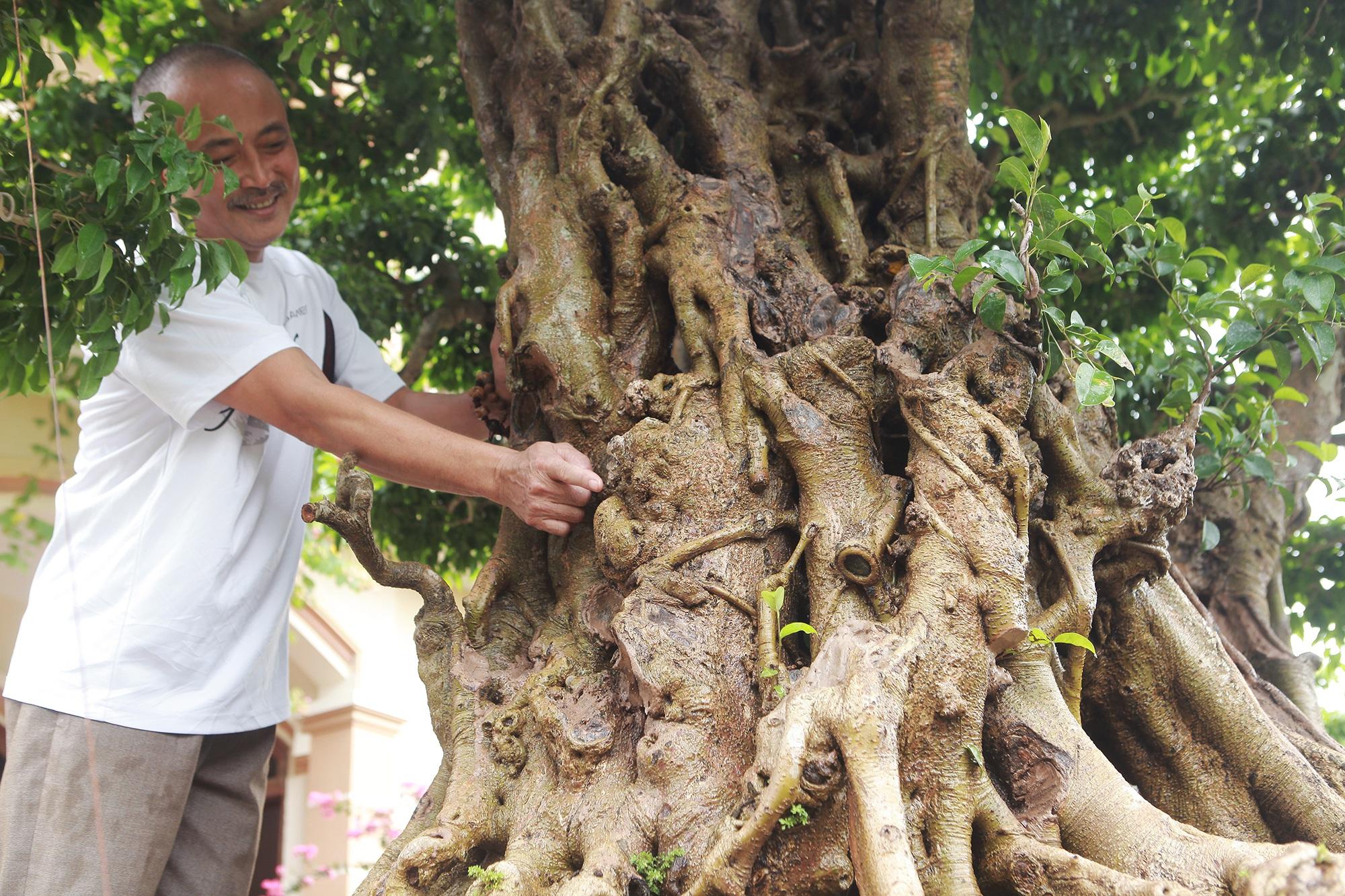 """""""Báu vật ẩn mình"""" có tuổi đời 500 năm ở Hà Nội, trả 100 cây vàng không bán - 8"""