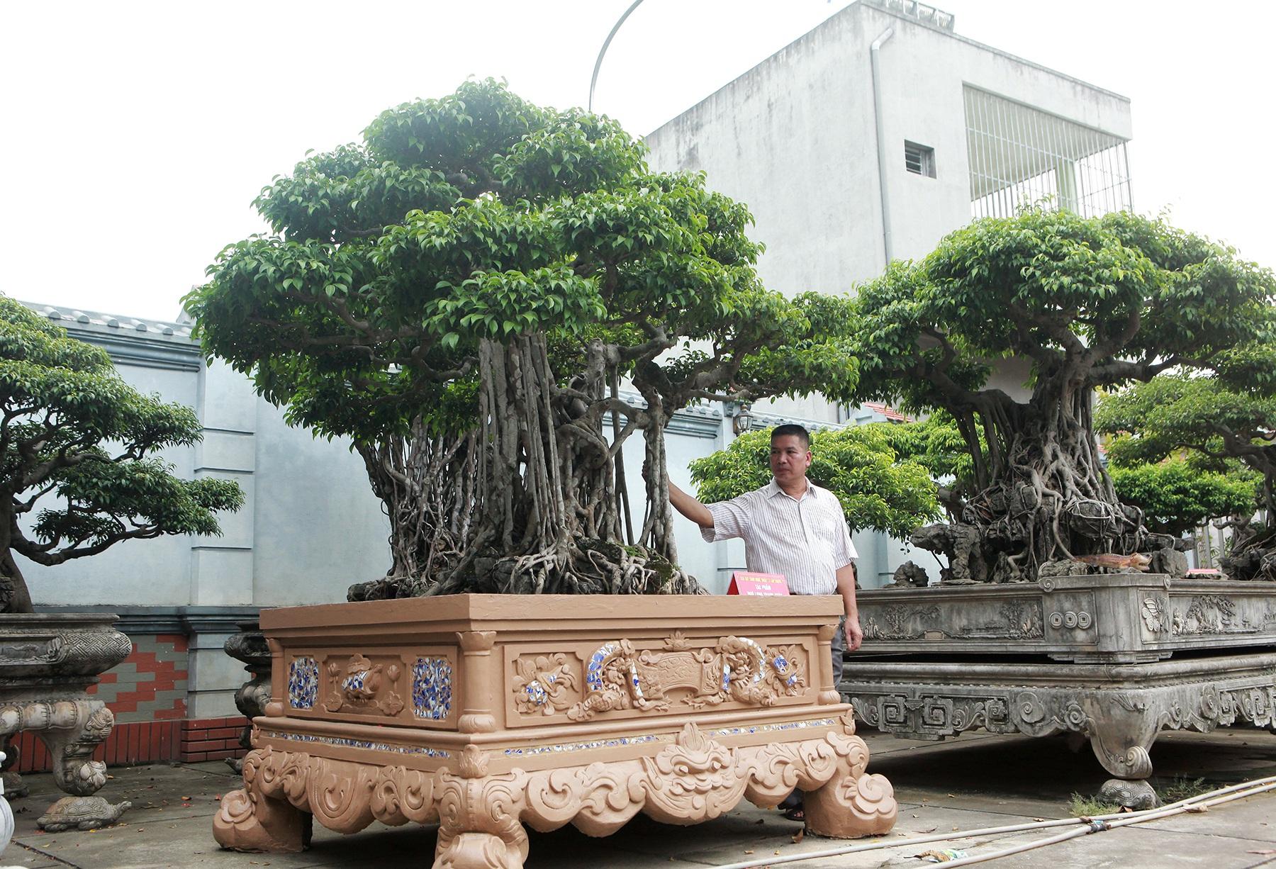 """Sanh cổ """"Ngũ long tranh châu"""" mua từ năm 1996 với giá 100 cây vàng - 10"""
