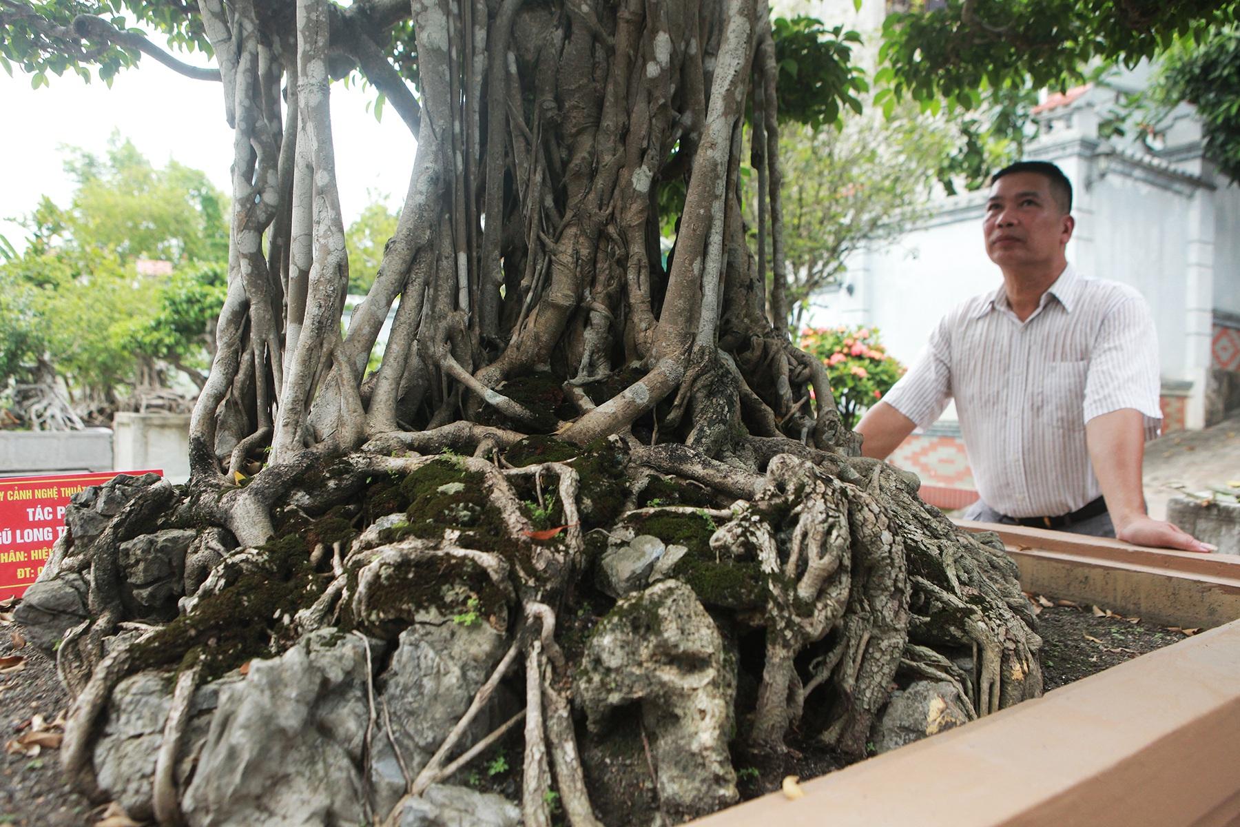 """Sanh cổ """"Ngũ long tranh châu"""" mua từ năm 1996 với giá 100 cây vàng - 9"""