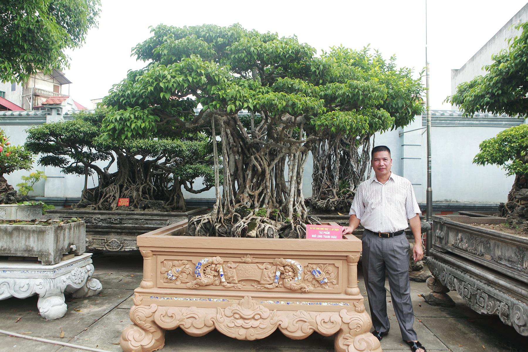 Vườn sanh cổ xứ Huế có giá triệu USD của đại gia Vĩnh Phúc - 7