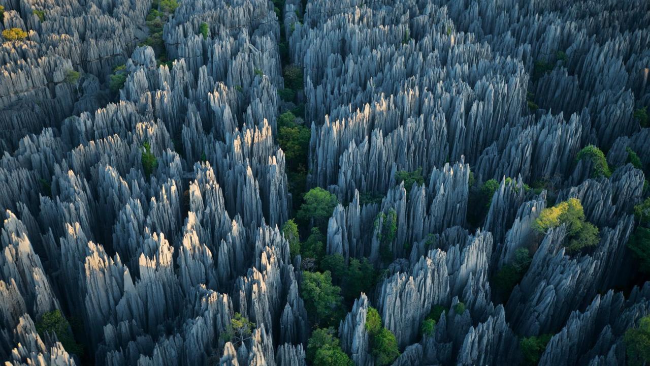 Ớn lạnh khu rừng đá sắc như lưỡi dao – nơi hiểm trở bậc nhất thế giới - 1
