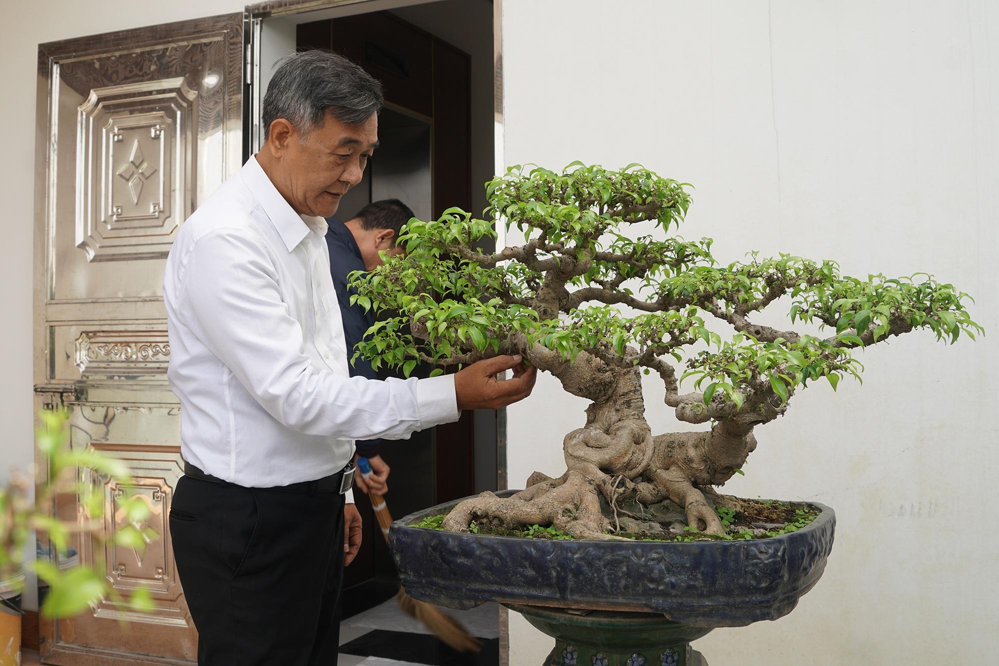 Đại gia chi gần 10 tỷ đồng mua cây cảnh đặt trên sân thượng ngắm mỗi ngày - 7