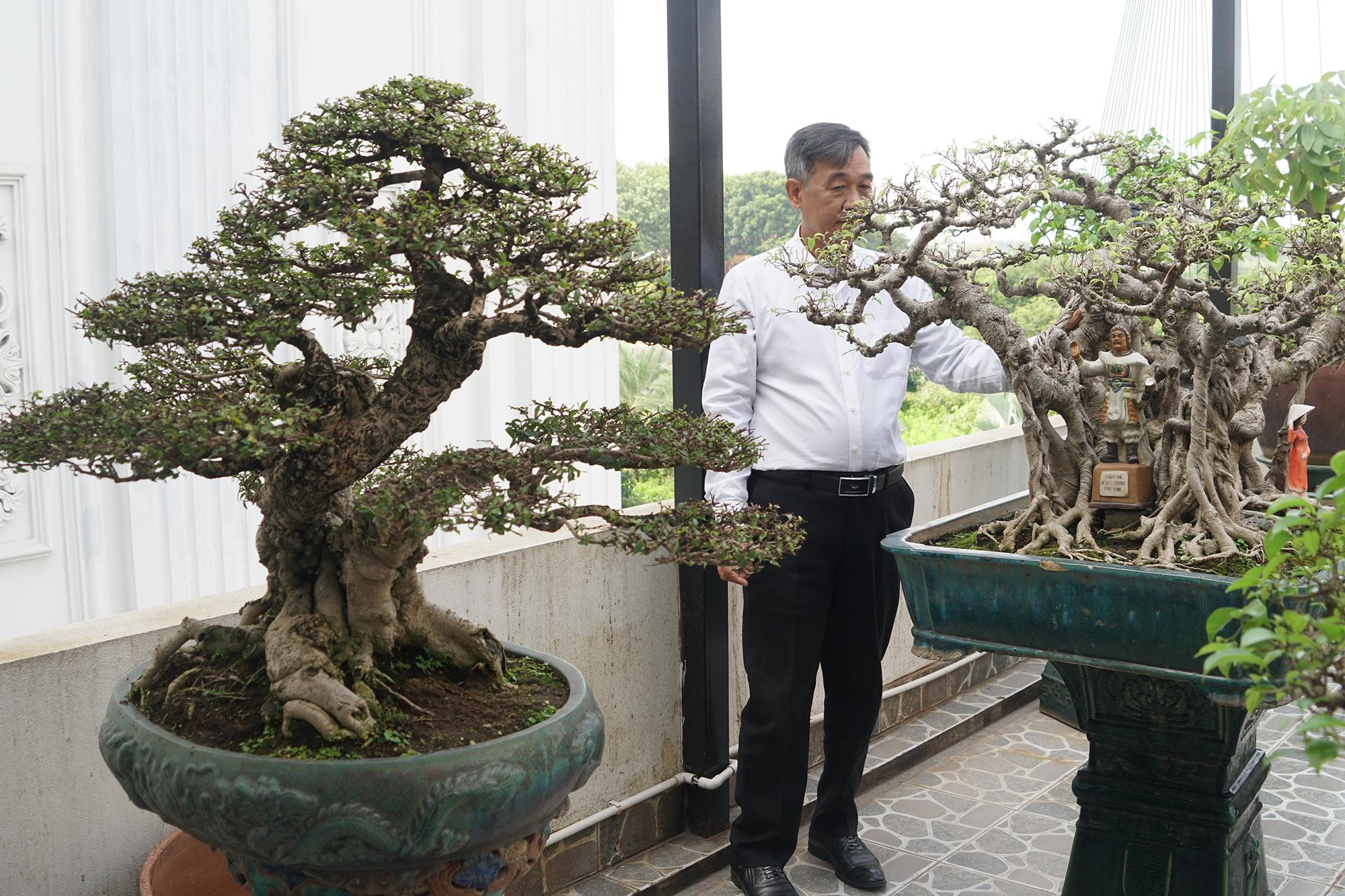 Đại gia chi gần 10 tỷ đồng mua cây cảnh đặt trên sân thượng ngắm mỗi ngày - 9