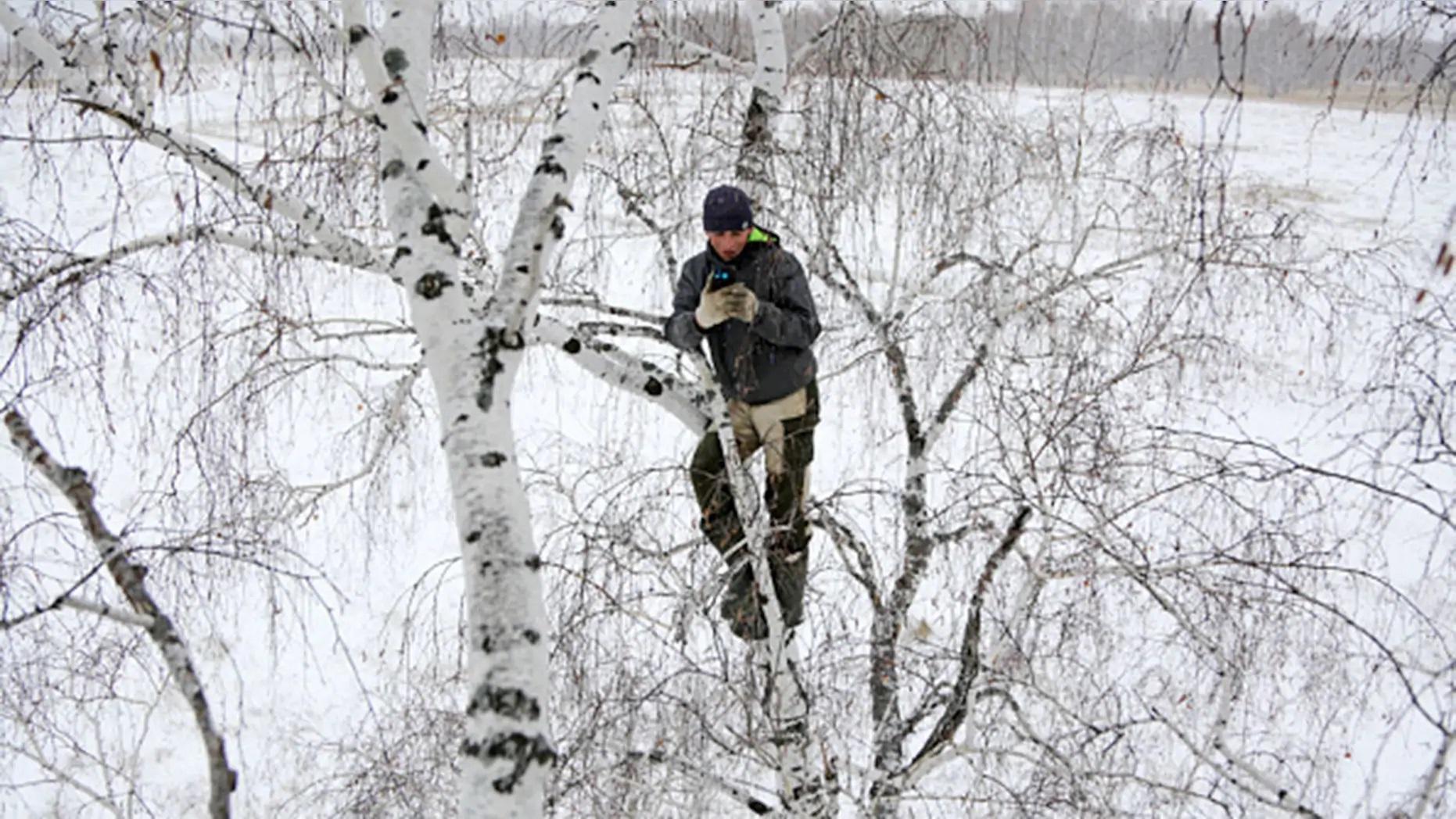 Chàng trai trèo cây cao 8m tìm bắt sóng di động để học trực tuyến - 1