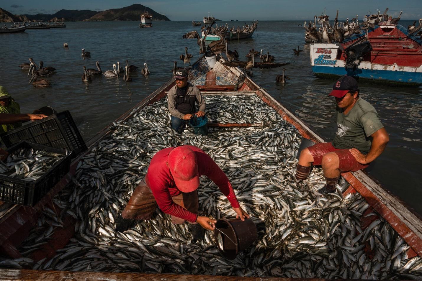 Châu báu bí ẩn liên tục dạt vào bờ biển, người dân đổ xô săn lùng kho báu - 4