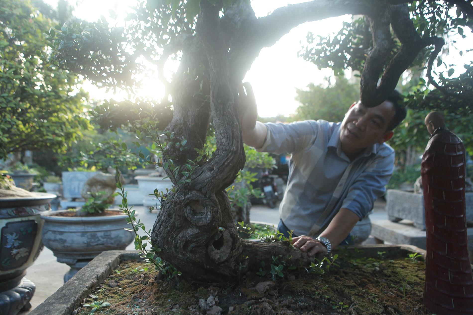 Chiêm ngưỡng hòn ngọc Viễn Đông giá tiền tỷ độc nhất vô nhị ở Việt Nam - 2