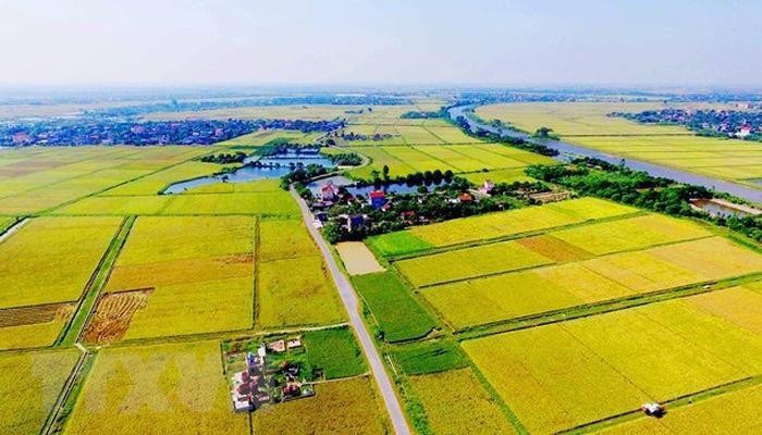 5 kinh nghiệm đầu tư đất nông nghiệp an toàn, sinh lời - 1