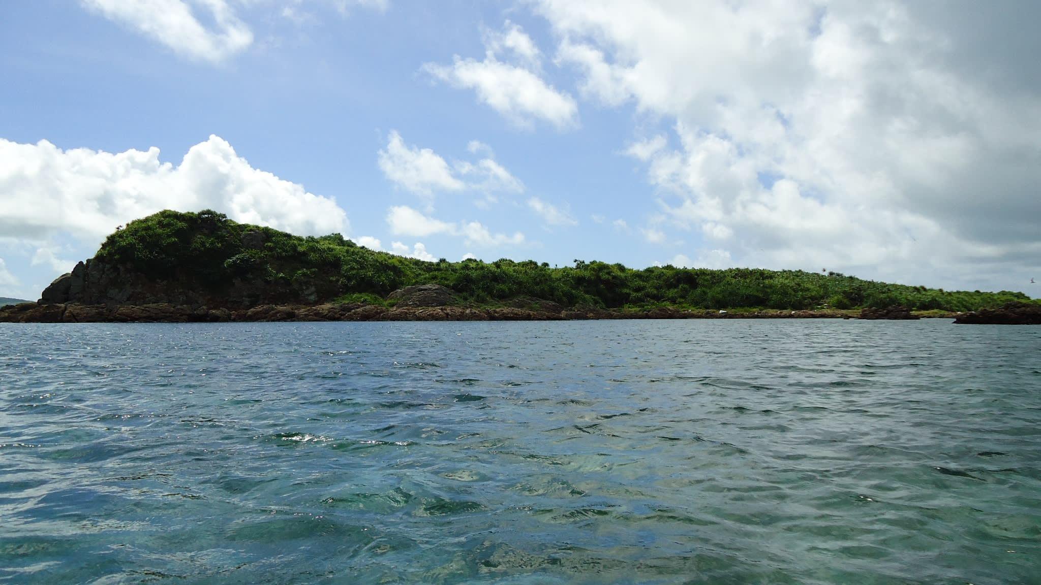 Tránh dịch Covid-19 kiểu đại gia: Chi tiền mua đảo hoang, vào rừng trú ẩn - 1