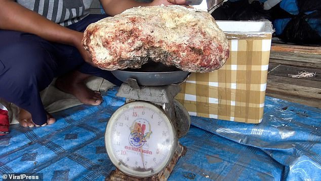 Vô tình nhặt được hòn đá lạ, nặng 7 kg, ngư dân trẻ vớ bẫm được cả kho báu tiền tỷ - 3