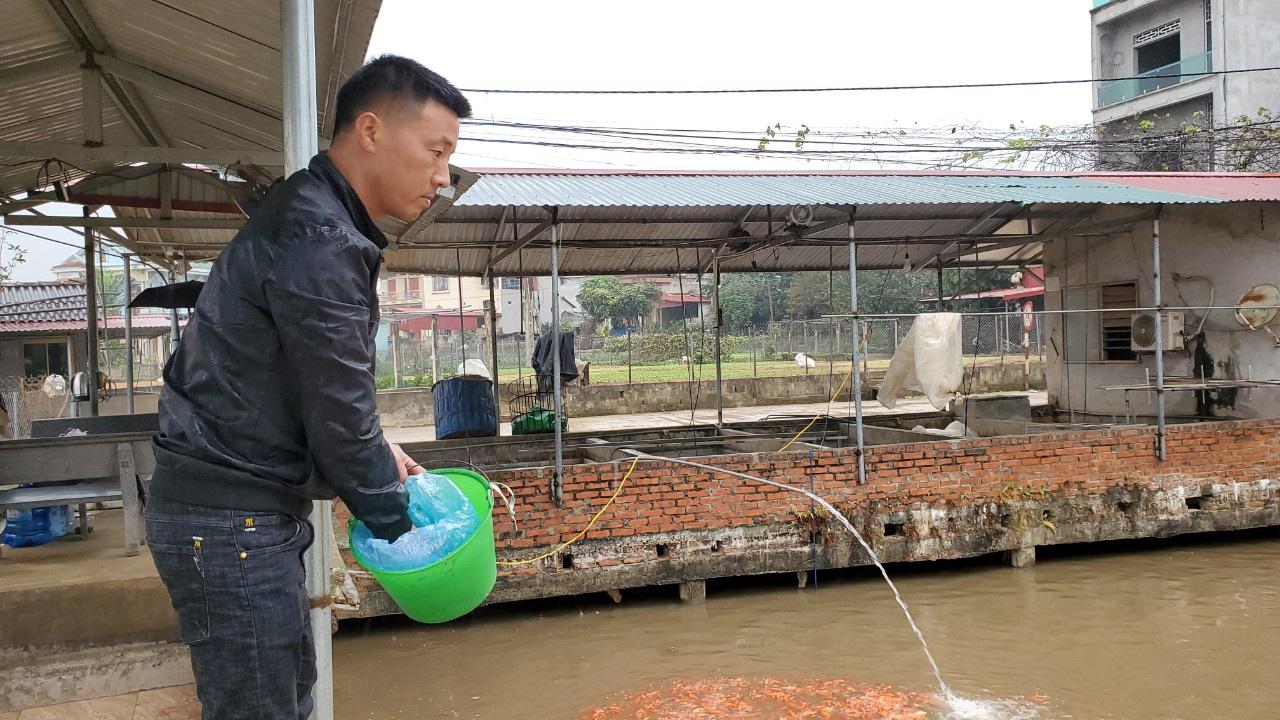 Tết ông Công, ông Táo: Người nuôi cá chép nhận đặt cọc hàng trăm triệu đồng - 7