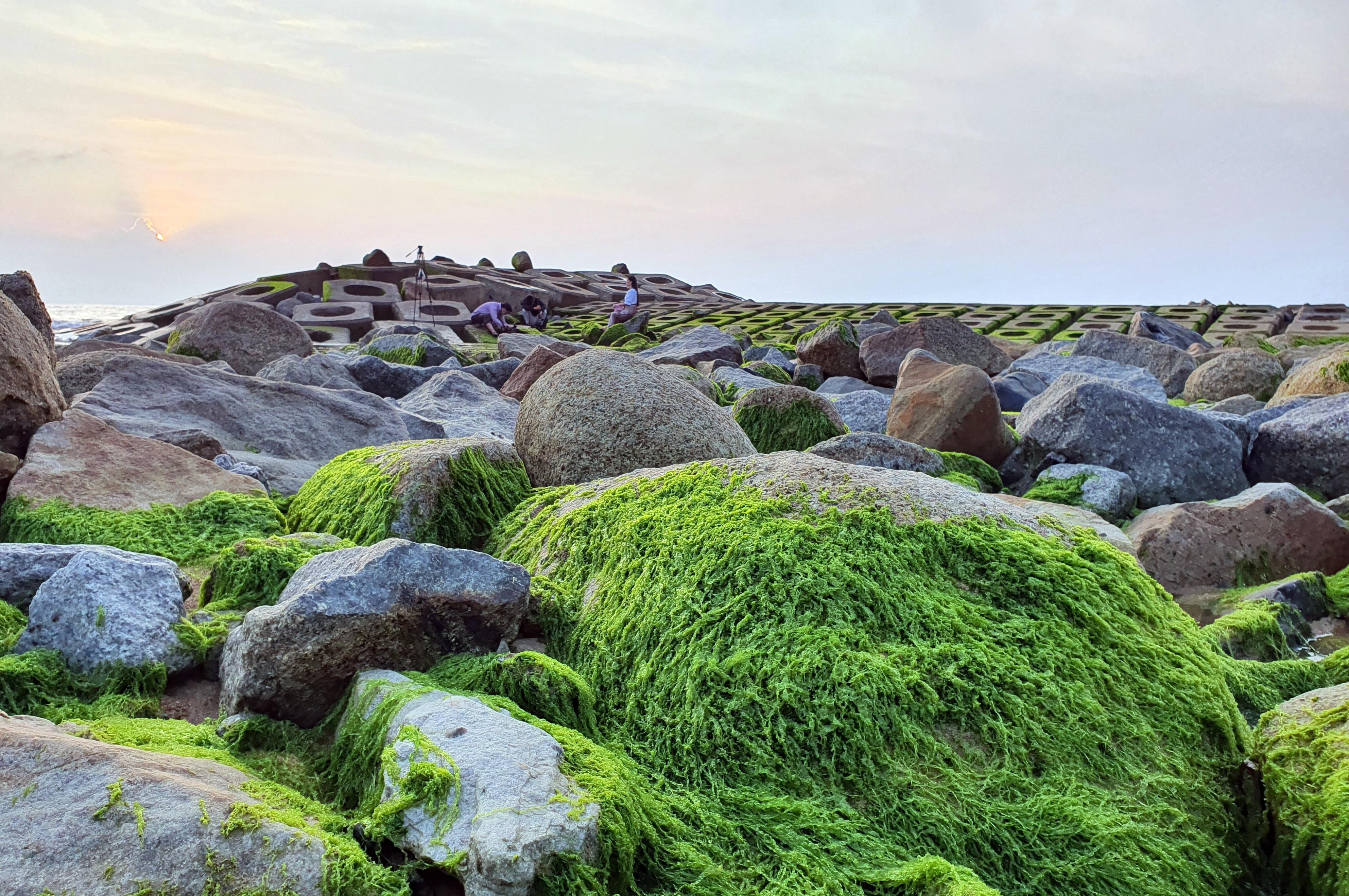 Du khách đổ xô check-in bãi đá rêu xanh đẹp nhất Phú Yên - 7