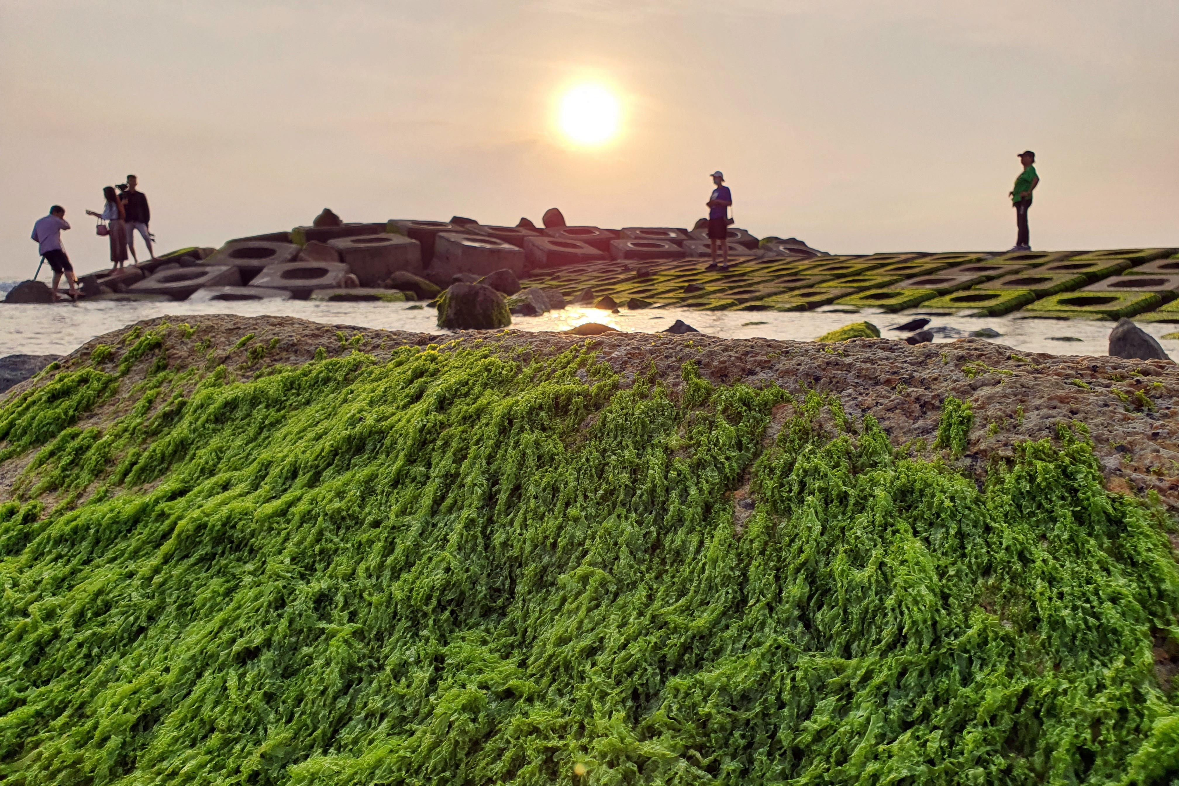Du khách đổ xô check-in bãi đá rêu xanh đẹp nhất Phú Yên - 4