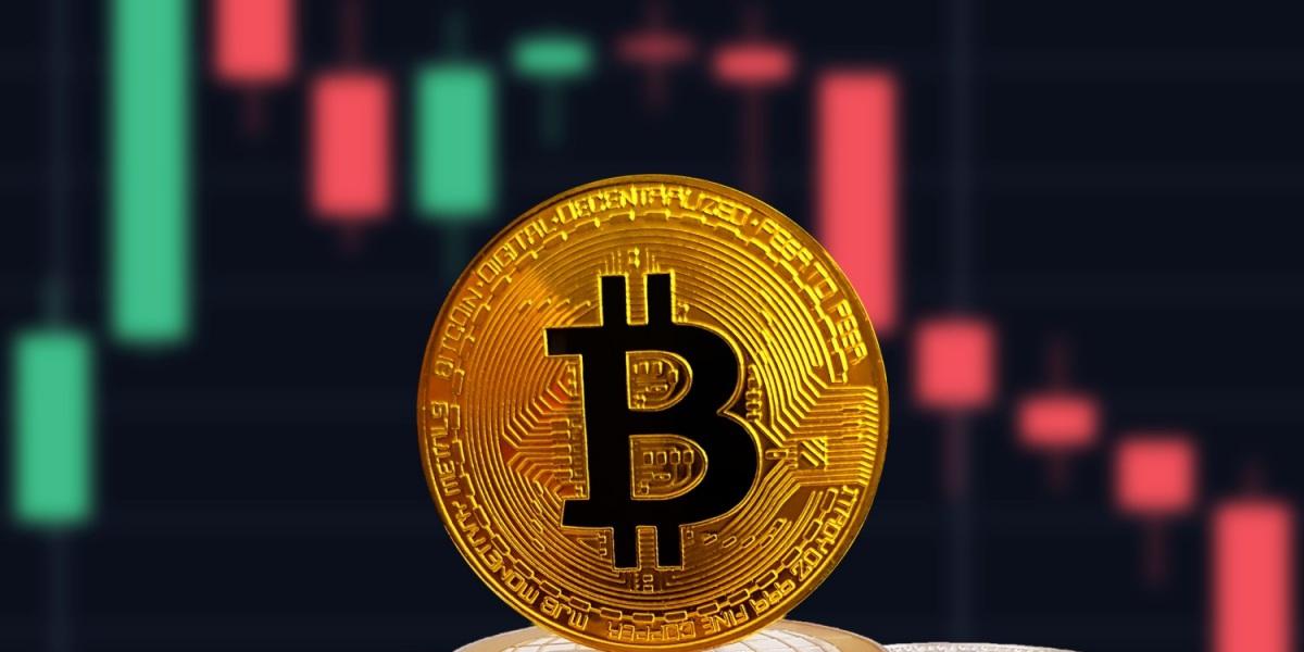 Bi hài thanh niên mất vợ vì cố giữ Bitcoin, nhất quyết không bán - 2