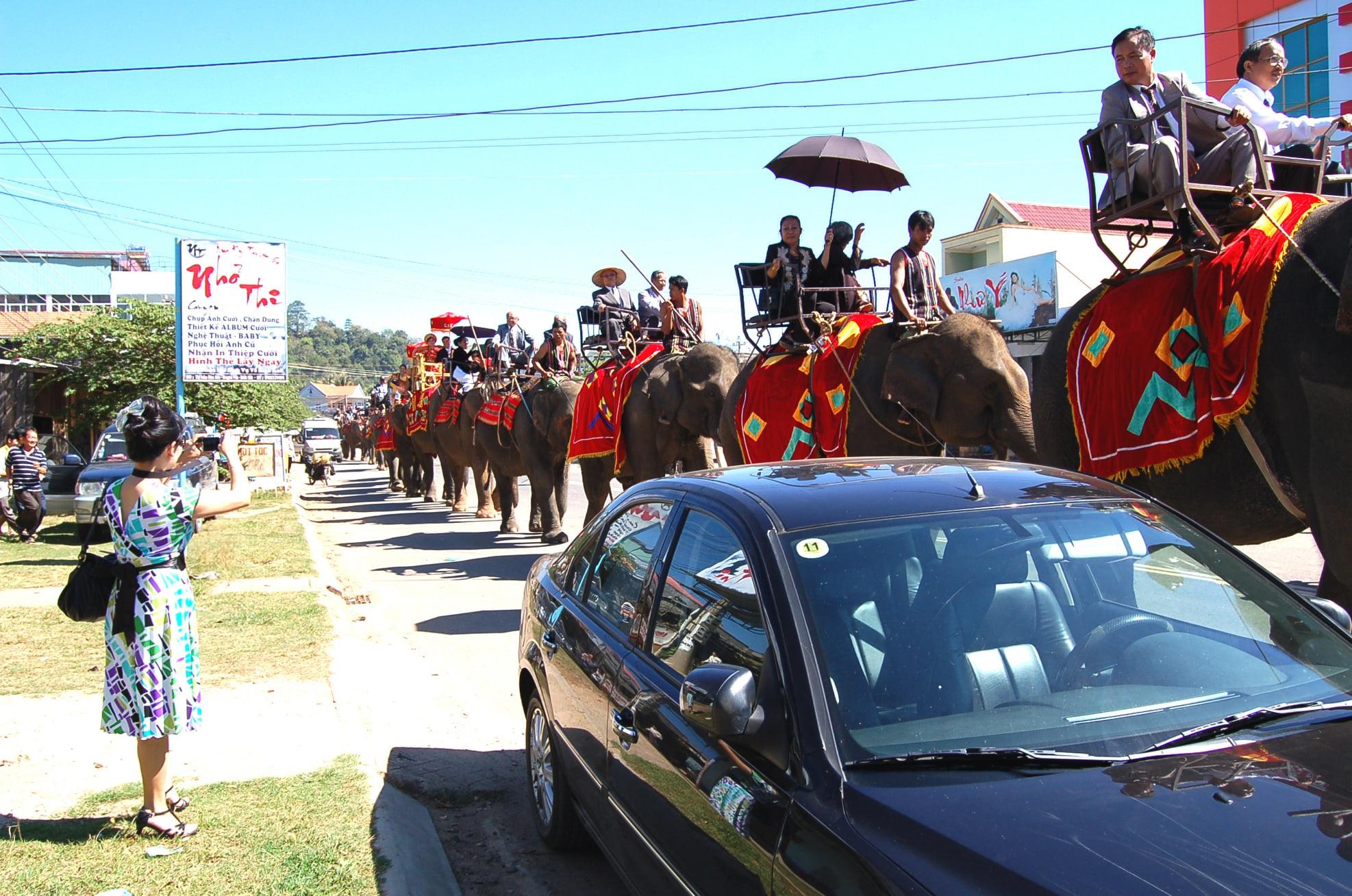Độc đáo lễ bắt rể cho con gái bằng 14 chú voi khủng ở Tây Nguyên - 3