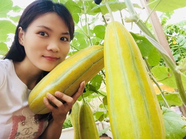 Cảnh trồng rau, nuôi gà, thả cá trên sân thượng của những nông dân phố - 4