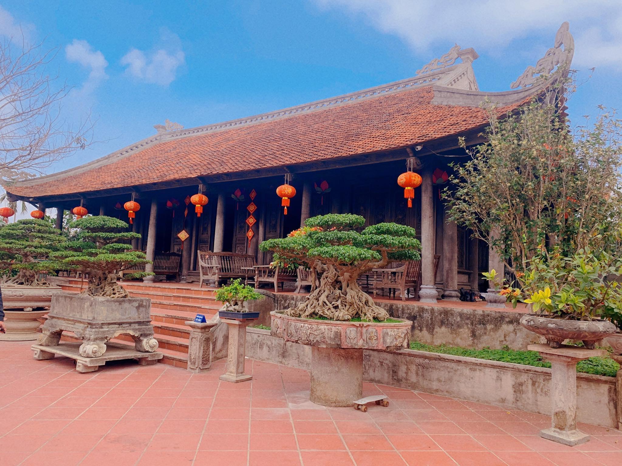 Biệt phủ 1.700m2 toàn cây cảnh bạc tỷ của gia đình ở Nam Định - 4
