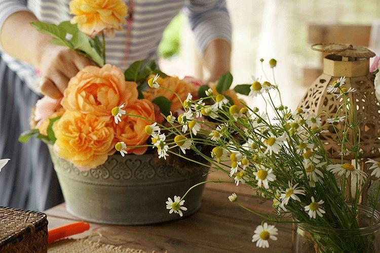 Cặp vợ chồng bỏ việc, bán nhà phố về quê chăm hoa, trồng rau sạch - 8