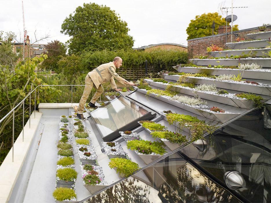 Vườn lạ như kim tự tháp có 800 cây trên mái nhà giữa phố thị đông đúc - 1