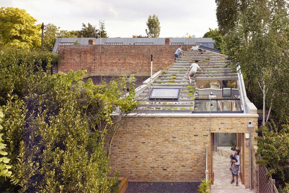 Vườn lạ như kim tự tháp có 800 cây trên mái nhà giữa phố thị đông đúc - 8