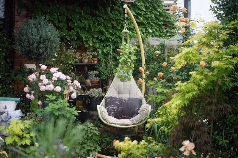 Mẹ cùng con gái biến sân thượng thành thiên đường trăm loài hoa - 8