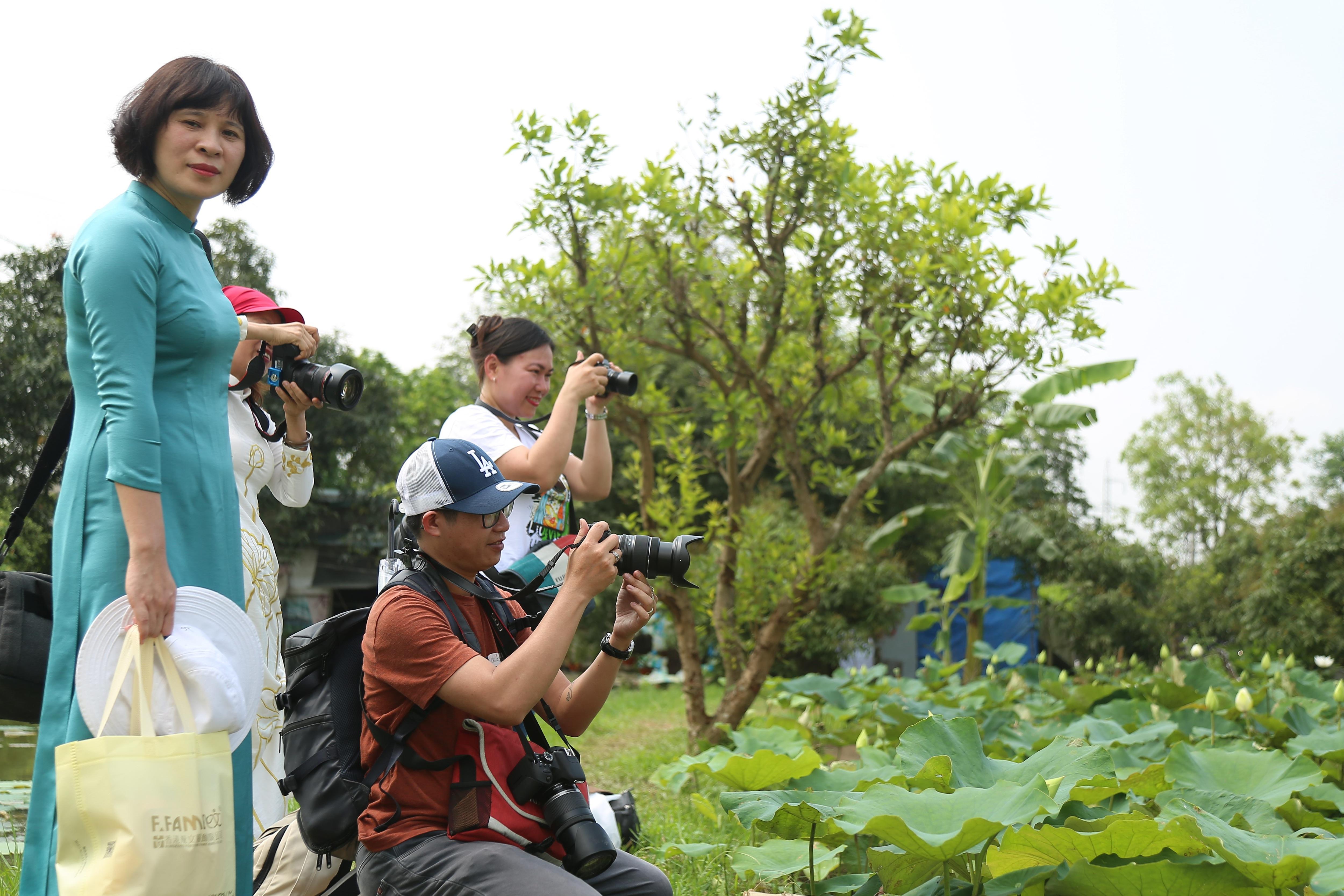 Hà Nội: Kiếm tiền triệu từ nghề trồng hoa sen trắng - 7